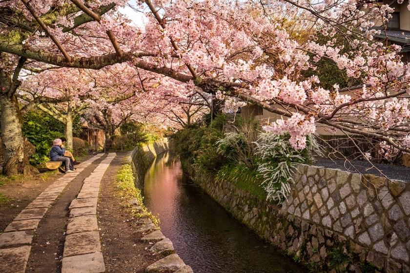 Kyoto-3776web