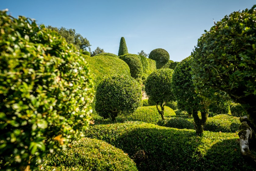 Topiary at Marqueyssac