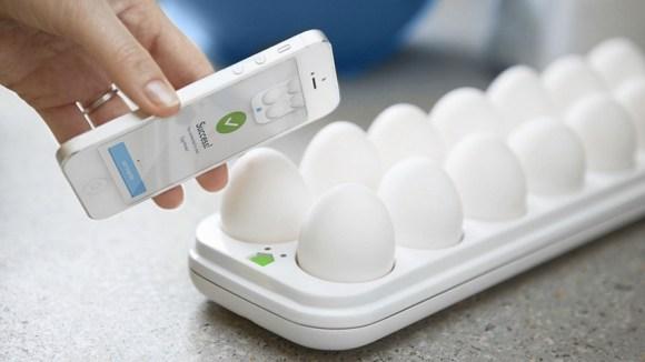 eggminder