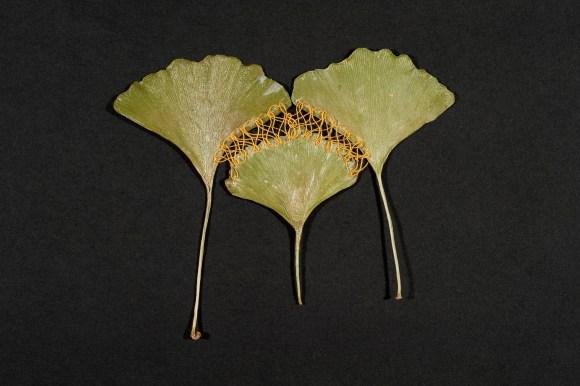 folhas mandalas costuradas (9)