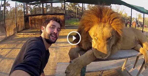 Esse cara tirou selfies inacreditáveis – e o melhor é como ele fez isso!