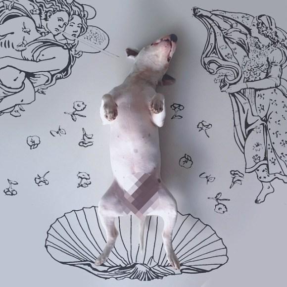 Cães e desenhos (12)