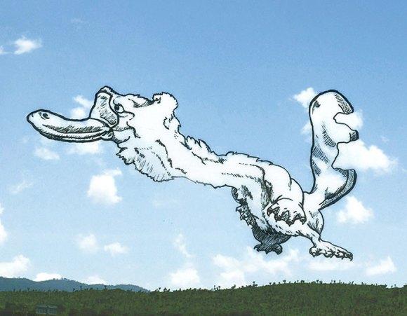 Desenho em nuvens - ornitorrinco (1)