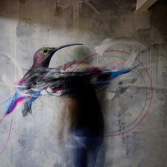 grafite spray pássaros (7)