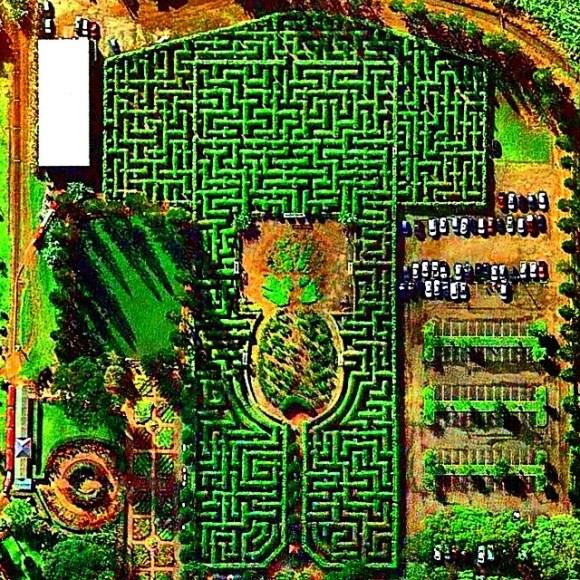 Labirinto no jardim da fazenda de abacaxis Plantation - Havaí - EUA - Fotos aéreas