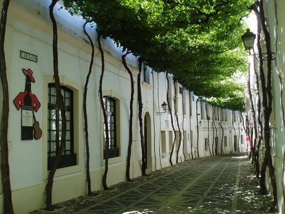 Ruas mais bonitas do mundo - 01 - Jerez - Espanha