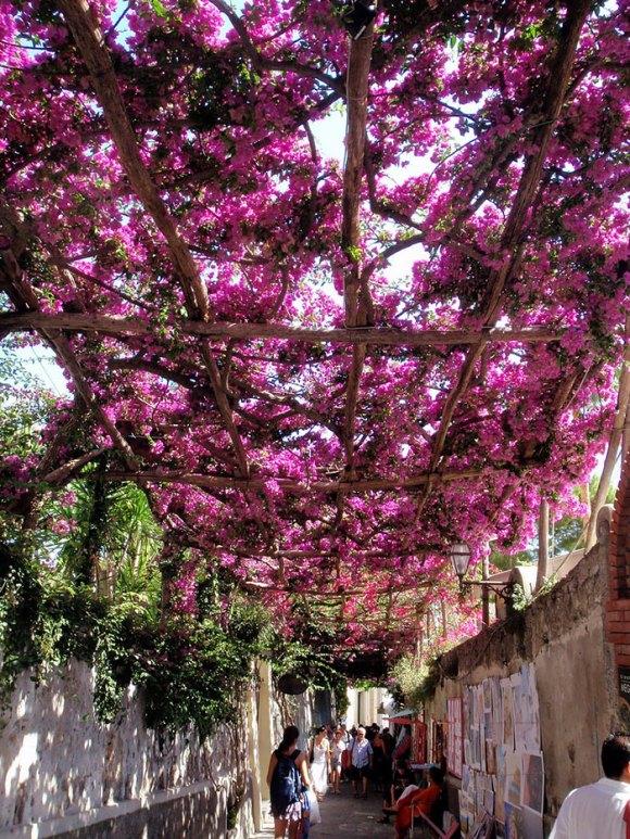 Ruas mais bonitas do mundo - 09 - Positano - Itália