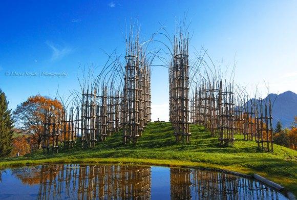 Catedral viva - Plantas - 11