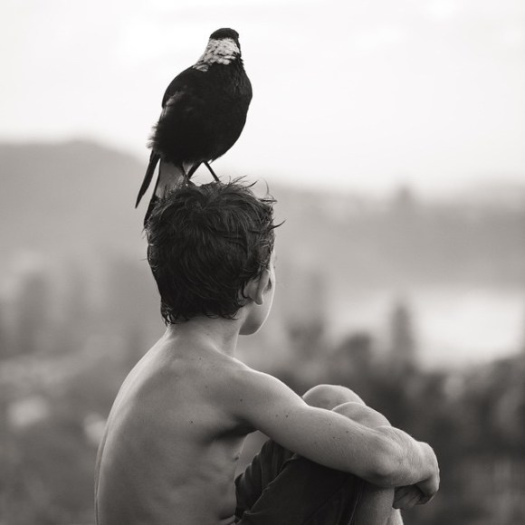 Amizade entre menino e pássaro 15