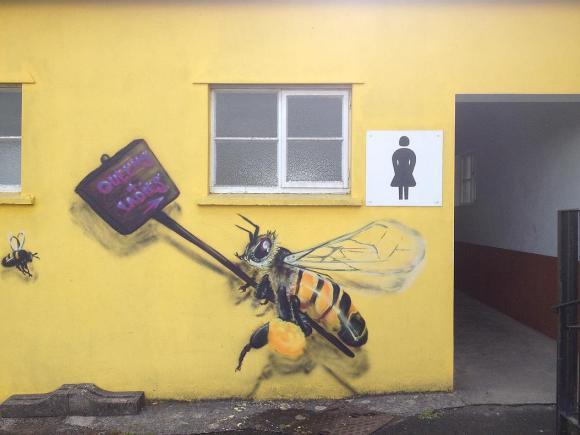 Grafite abelhas 12