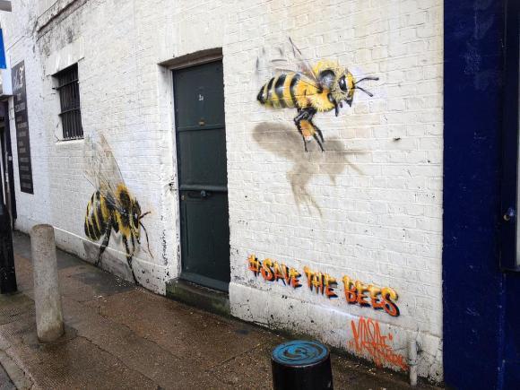 Grafite abelhas 7