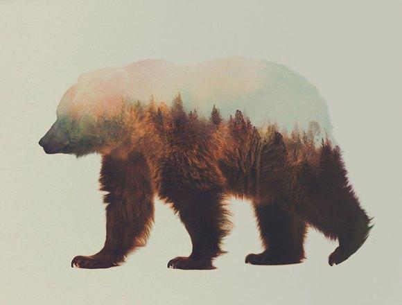 Fotos de dupla exposição - animais e floresta 10