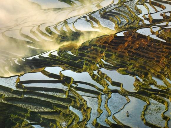 Campos de arroz chineses 3