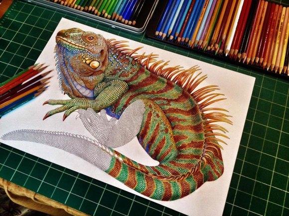 Desenho de lagarto 5