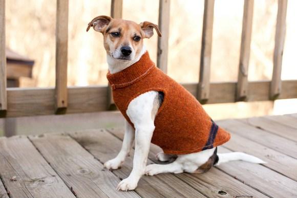 transforme uma blusa velha em uma roupa maneira para seu cachorro. Black Bedroom Furniture Sets. Home Design Ideas