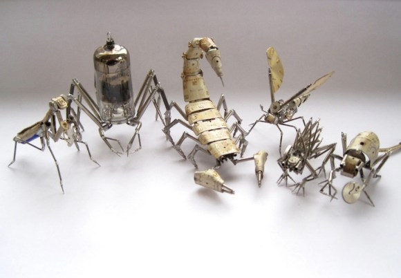 insetos 1