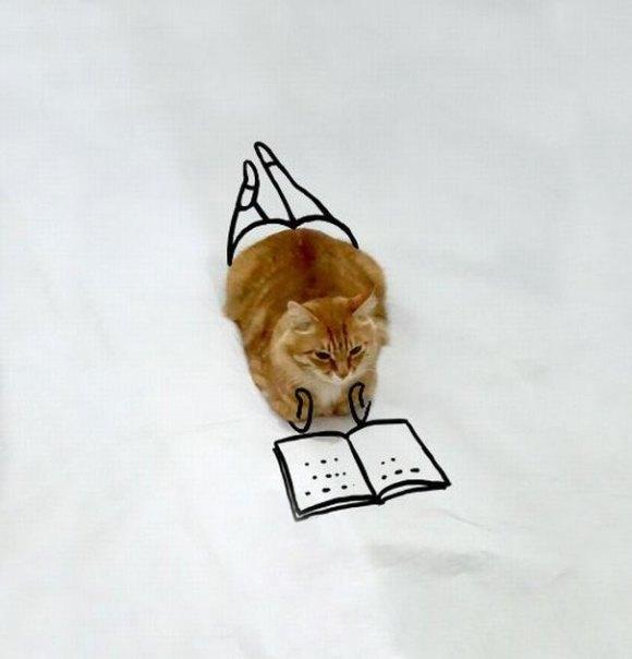 Desenhos sobre a foto de um gato 1 - Sofia