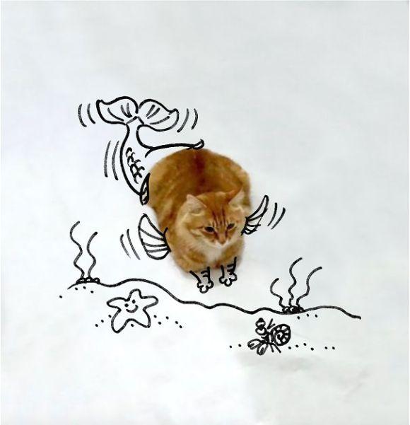 Desenhos sobre a foto de um gato 14 - Ruben Aquino