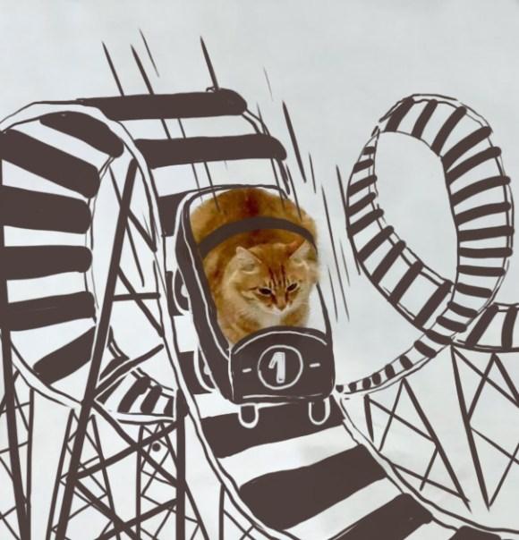 Desenhos sobre a foto de um gato 17 - Melisa Navarro