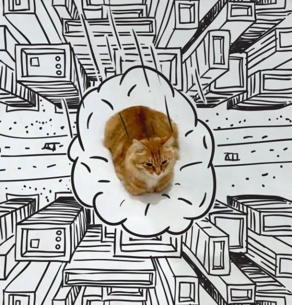 Desenhos sobre a foto de um gato 6 - Gabriel Gabriel