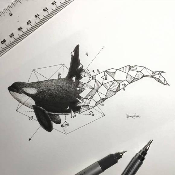 animais e geometria 11