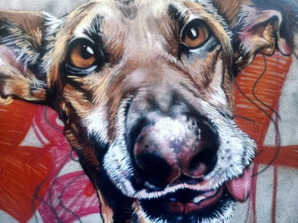 grafite cachorro 2