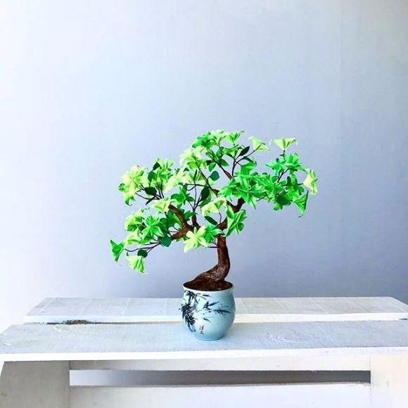 Bonsai verde sobre mesa