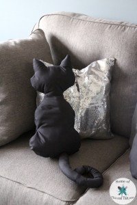 DIY Luna Pillow   DIY Cat Pillows! - Some of This and That