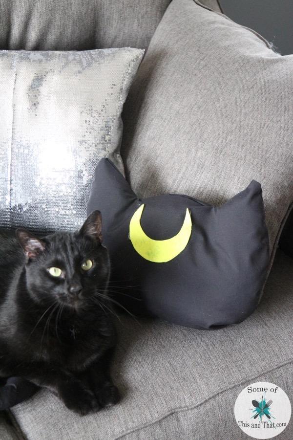 DIY Luna Pillow