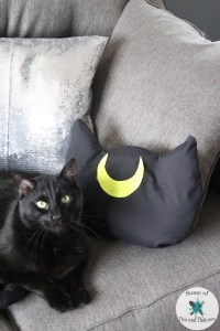 DIY Luna Pillow | DIY Cat Pillows! - Some of This and That
