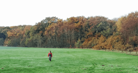 Boy stands in a lonely field. Autism parent piece.
