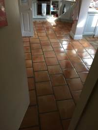 Bleach On Tile Floor | Tile Design Ideas
