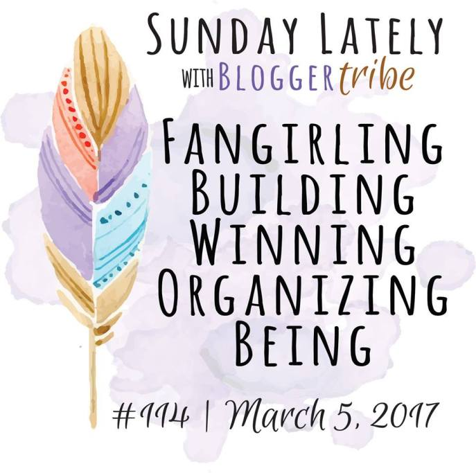 Sunday Lately: Fangirling, Building, Winning, Organizing & Being - Some Shananagins