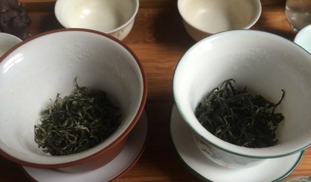 bi_lo_chun_teavivre_and_stone_leaf