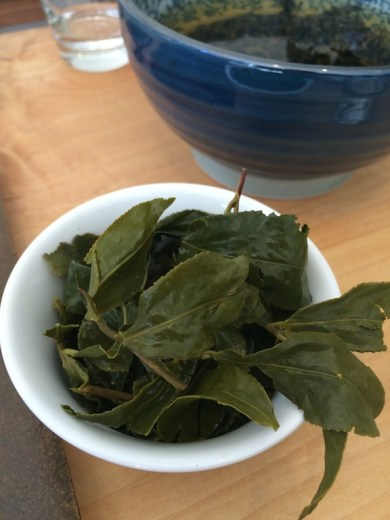 song-tea-li-shan-winter-leaves