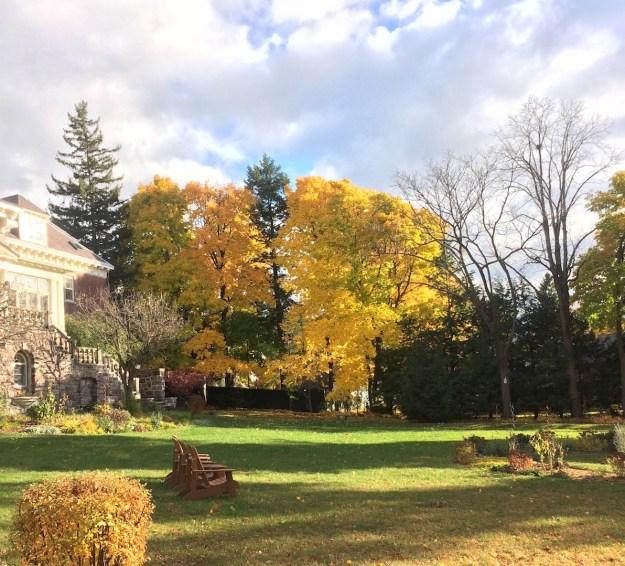 outdoor-autumn