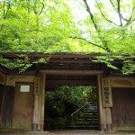 京都の新緑で床もみじが見ごろの瑠璃光院へ行って来ました!【絶景編】