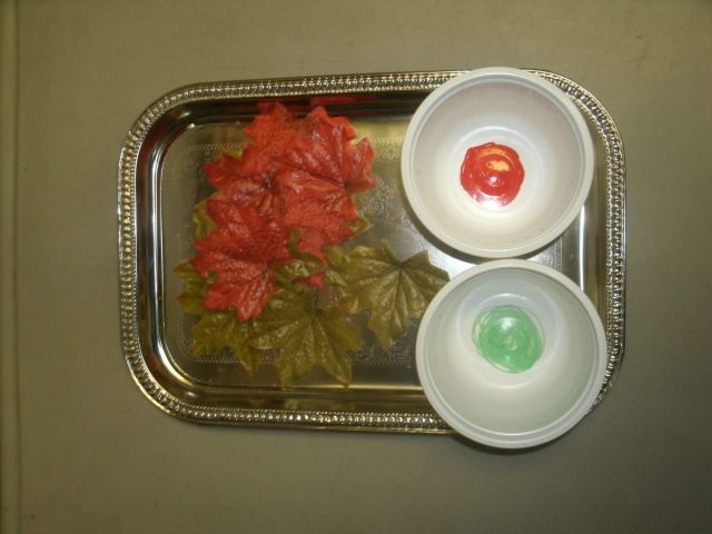 read green leaf sort tray