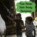 horse unit study
