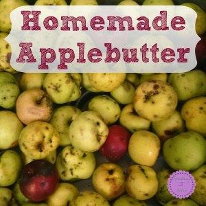 homemade applebutter square