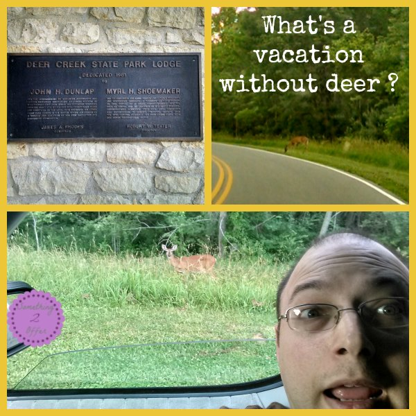 Deer Creek vacation without deer