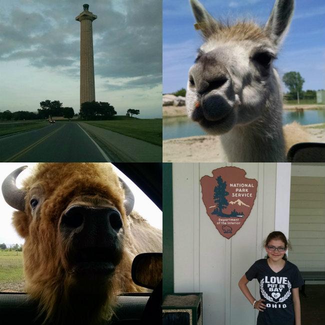 NPS and African Safari Wildlife