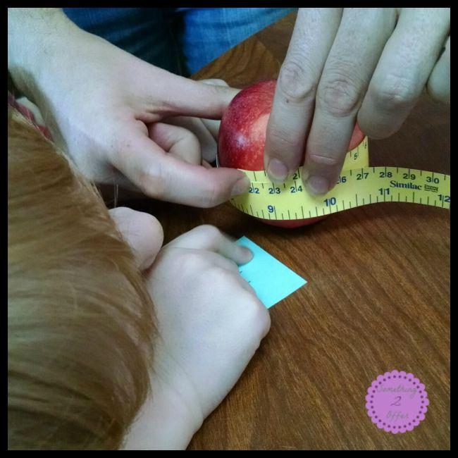 Apple STEM measuring