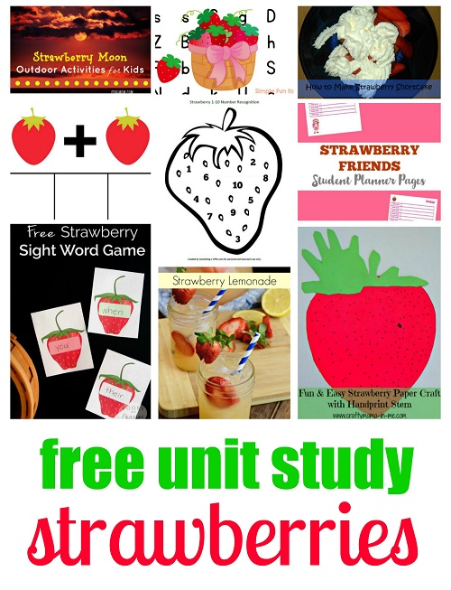 Strawberry-Collage-1