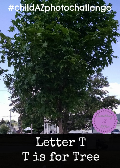 Letter T T is for Tree