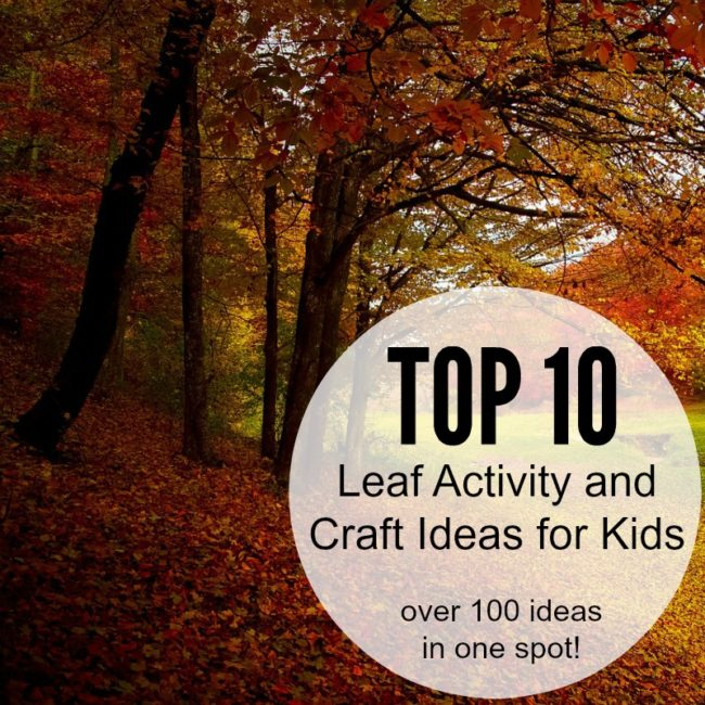 top 10 leaf activity and craft ideas