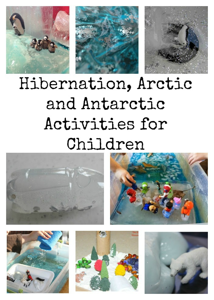 Hibernation, Arctic and Antarctic Activities for Children