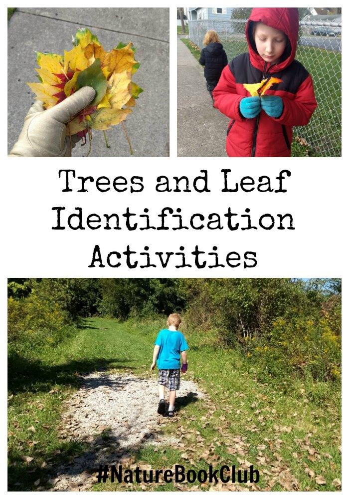 Tree and leaf ID #NatureBookClub