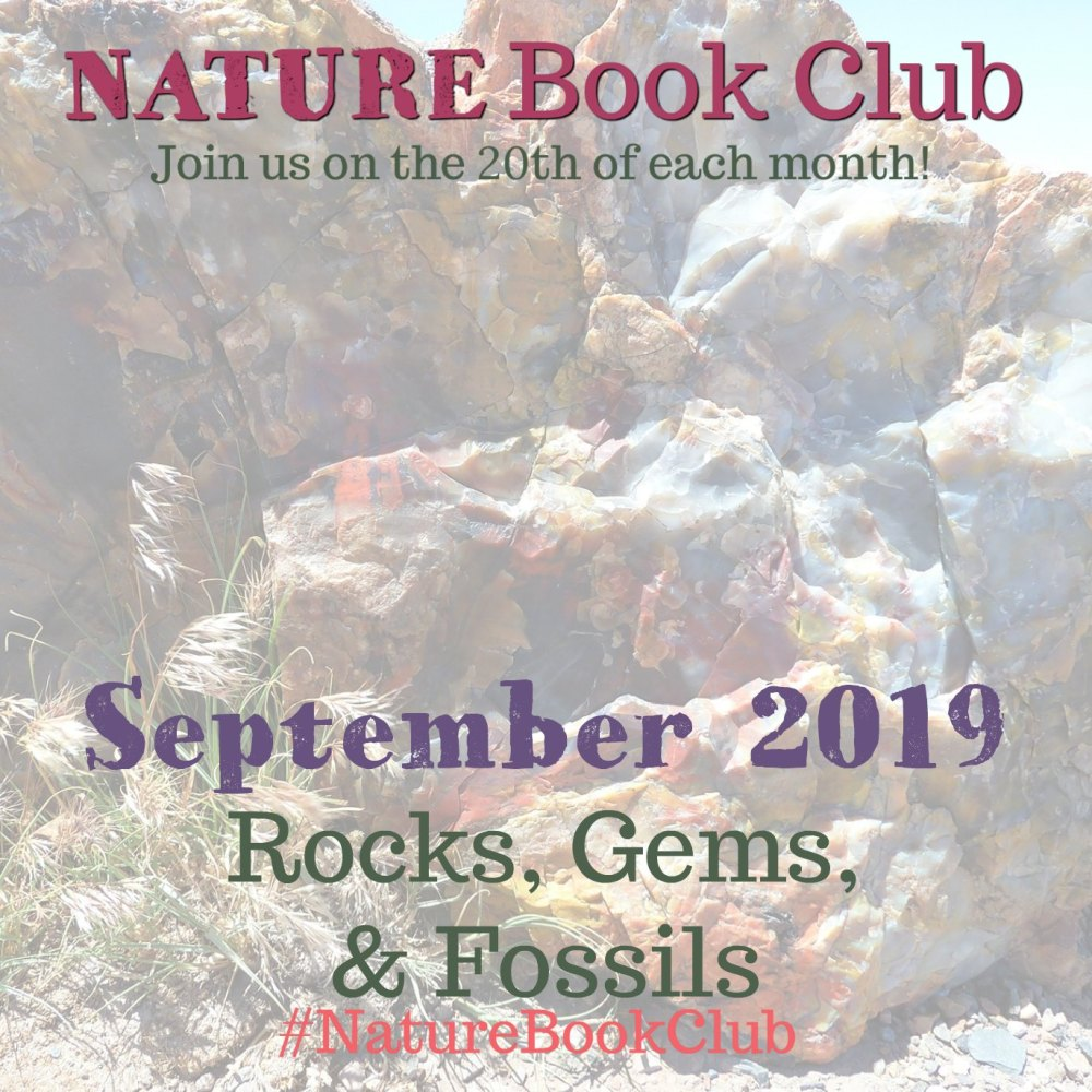 Rocks, gems and fossils nature book club
