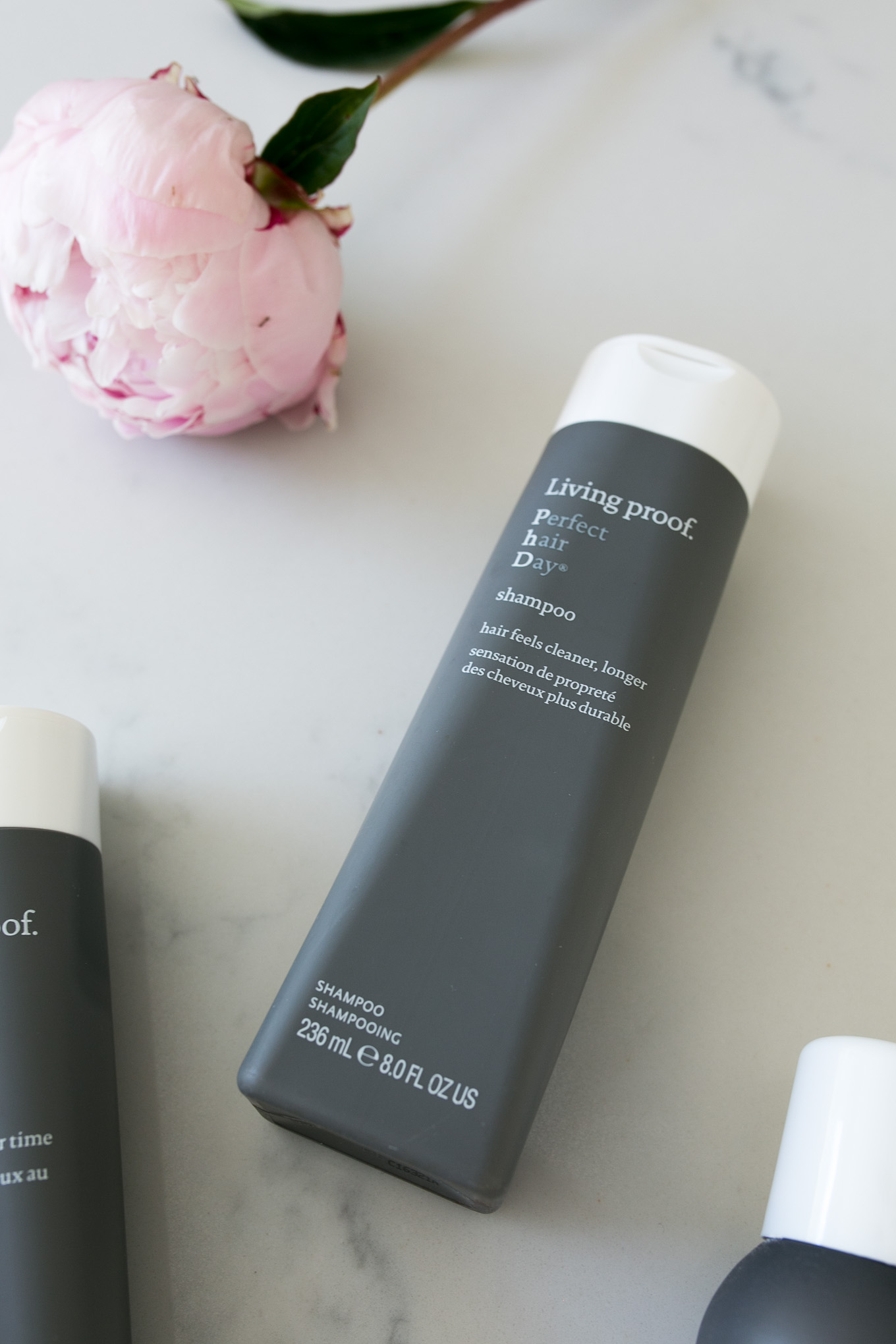 Blogger Daryl-Ann Denner of Something Beautiful shares her favorite hair care products including Living Proof Perfect Hair Day Dry Shampoo